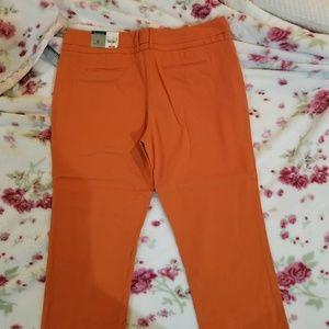 Ankle Length Dress Pants